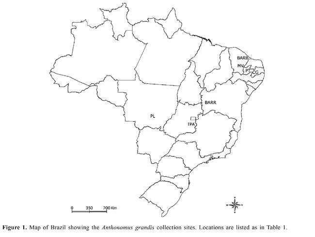 Genetic Diversity Of Brazilian Natural Populations Of Anthonomus